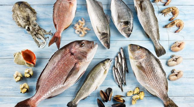 Balık, Yumurta Ve Beyaz Et Vücudumuzun Kalkanı