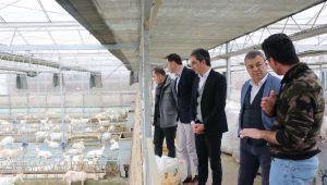 İzmir Tarımı ve Hayvancılığında Yeni Yol Haritası Belirleniyor