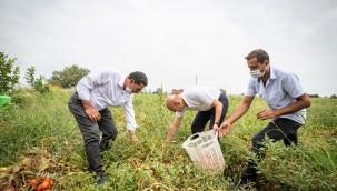 İzmir'de Tarıma Dayalı Ekonomi Geliştirilecek