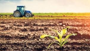 Geçmişteki 6 Bin Yıldan Fazla Gıda Üretilmesi Gerek