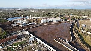 Ayvalık'ta Temiz Su Kaynakları Büyük Zarar Gördü
