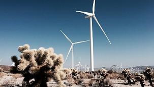 Gelecek Yıllarda RES'ler Daha Fazla Enerji Üretecek