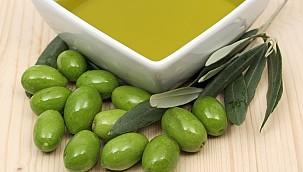 Zeytinyağı İhracatı Yüzde 20 Arttı
