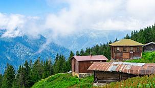 Kamuya Ait Ormanlık Alanlar Şirketlerin Kullanımına Açıldı