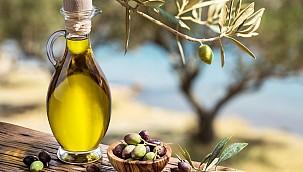Türk zeytinyağı sektörü ihracat yasağına tepkili
