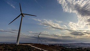 Avrupa'da rüzgar enerjisi hız kesmeyecek