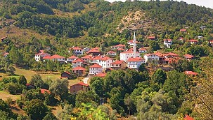 Mahalle olan köylerden kırsal başvurusu